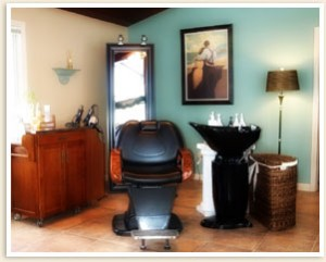 Inside Botanica Salon